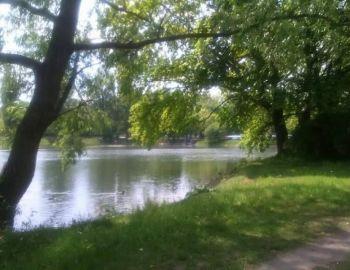 Darmowe pozwolenia na obwód rzeki Ner 1 wydawane przez Regionalnego Zarządu Gospodarki Wodnej Wód Polskich w Poznaniu